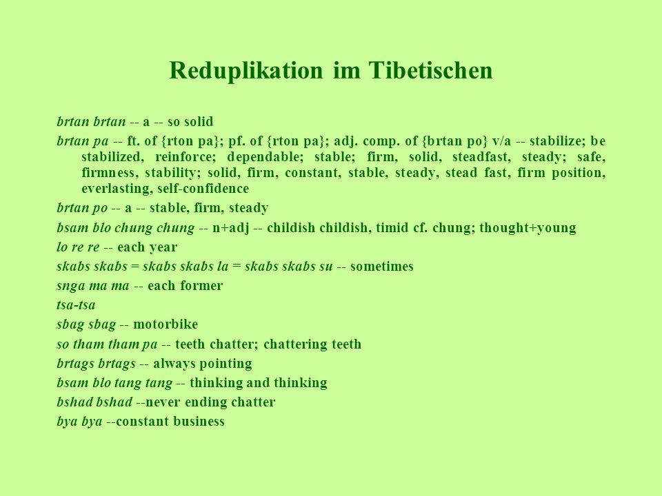 Reduplikation im Tibetischen brtan brtan -- a -- so solid brtan pa -- ft. of {rton pa}; pf. of {rton pa}; adj. comp. of {brtan po} v/a -- stabilize; b