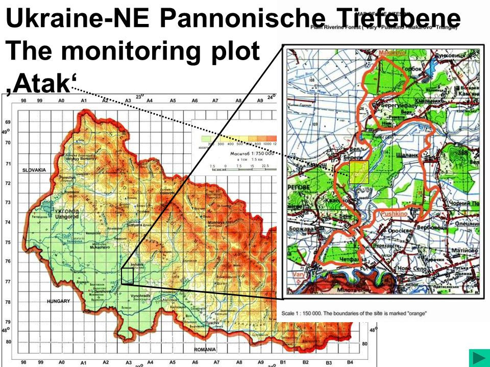 Ukraine-NE Pannonische Tiefebene The monitoring plot Atak