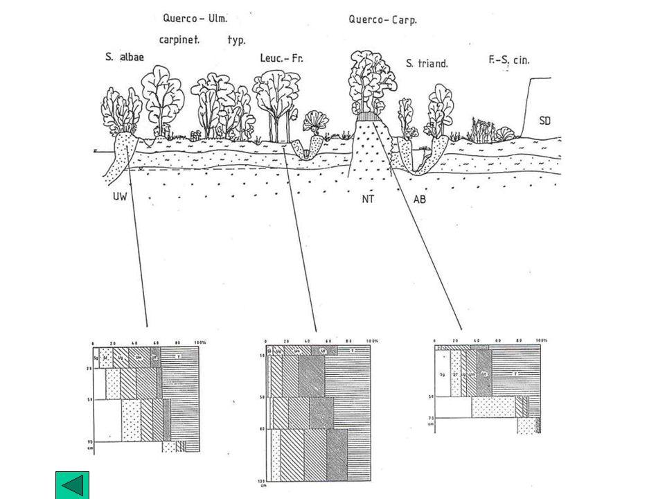Hydrologische Verhältnisse
