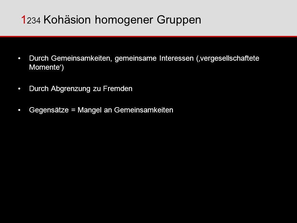 1 234 Kohäsion homogener Gruppen Durch Gemeinsamkeiten, gemeinsame Interessen (vergesellschaftete Momente) Durch Abgrenzung zu Fremden Gegensätze = Ma