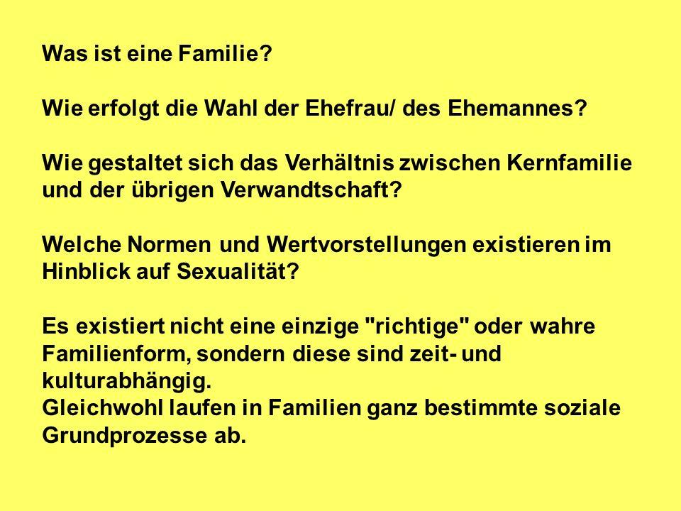 Familie erfüllt in unterschiedlicher Bedeutung Funktionen: 1.) der Fortpflanzung 2.) der arbeitsteiligen Produktion und Versorgung 3.) der Statuszuweisung bzw.