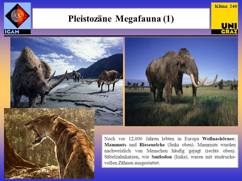 Pleistozäne Megafauna (1) Noch vor 12,000 Jahren lebten in Europa Wollnashörner, Mammuts und Riesenelche (links oben). Mammuts wurden nachweislich von