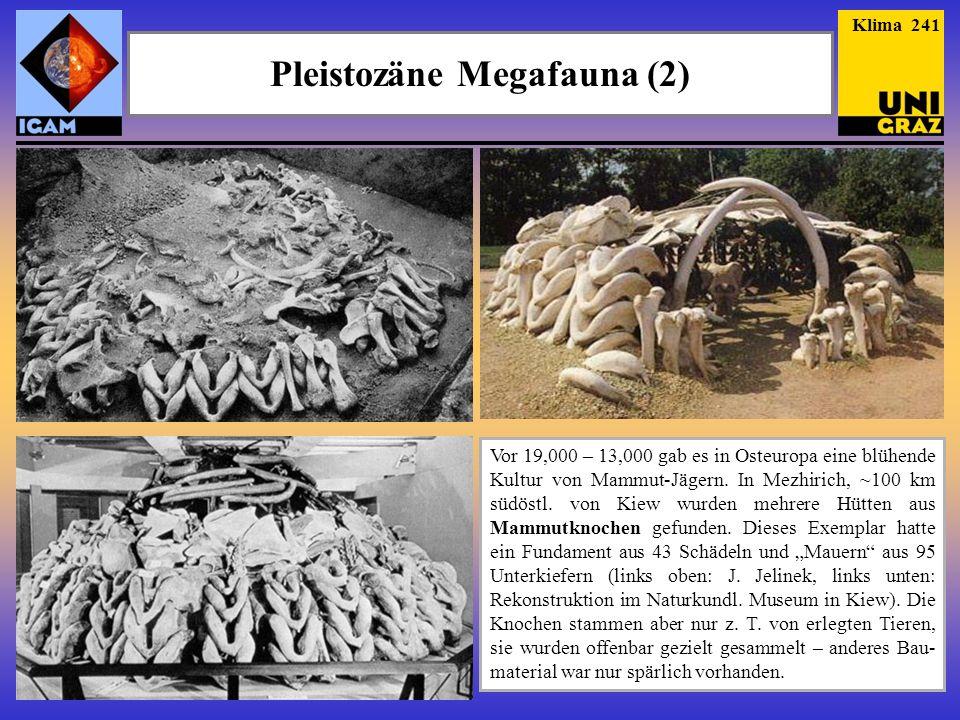 Pleistozäne Megafauna (2) Vor 19,000 – 13,000 gab es in Osteuropa eine blühende Kultur von Mammut-Jägern. In Mezhirich, ~100 km südöstl. von Kiew wurd
