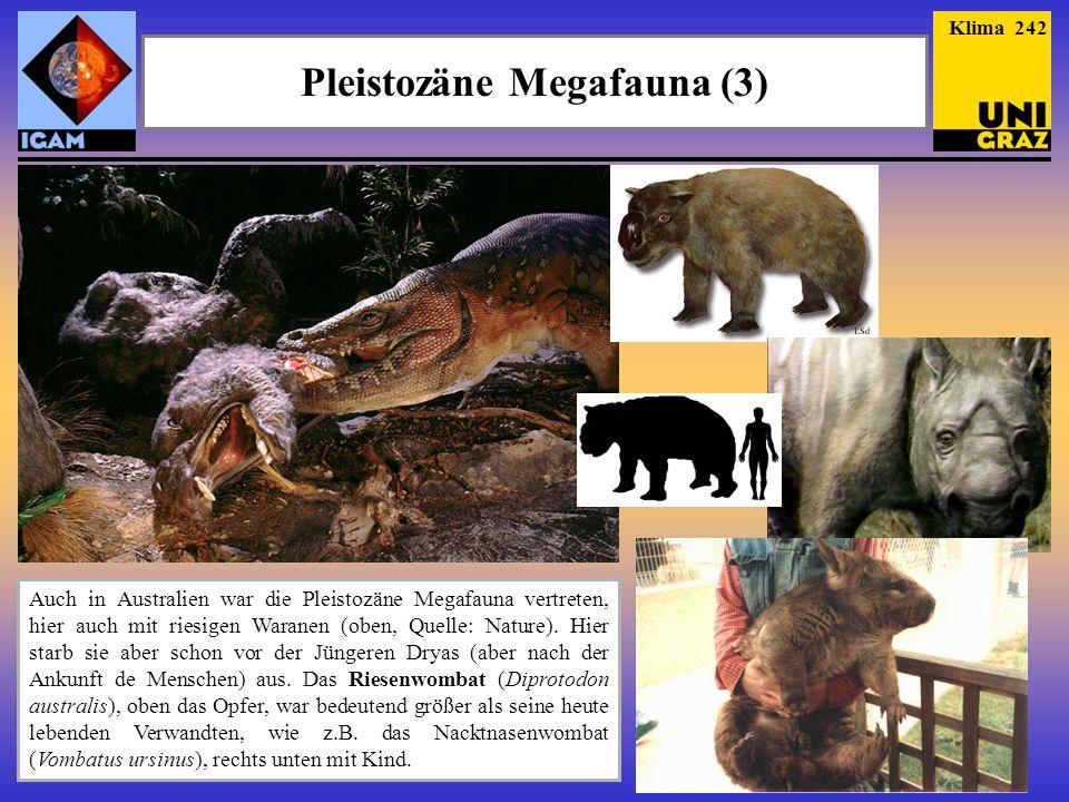 Pleistozäne Megafauna (3) Auch in Australien war die Pleistozäne Megafauna vertreten, hier auch mit riesigen Waranen (oben, Quelle: Nature). Hier star