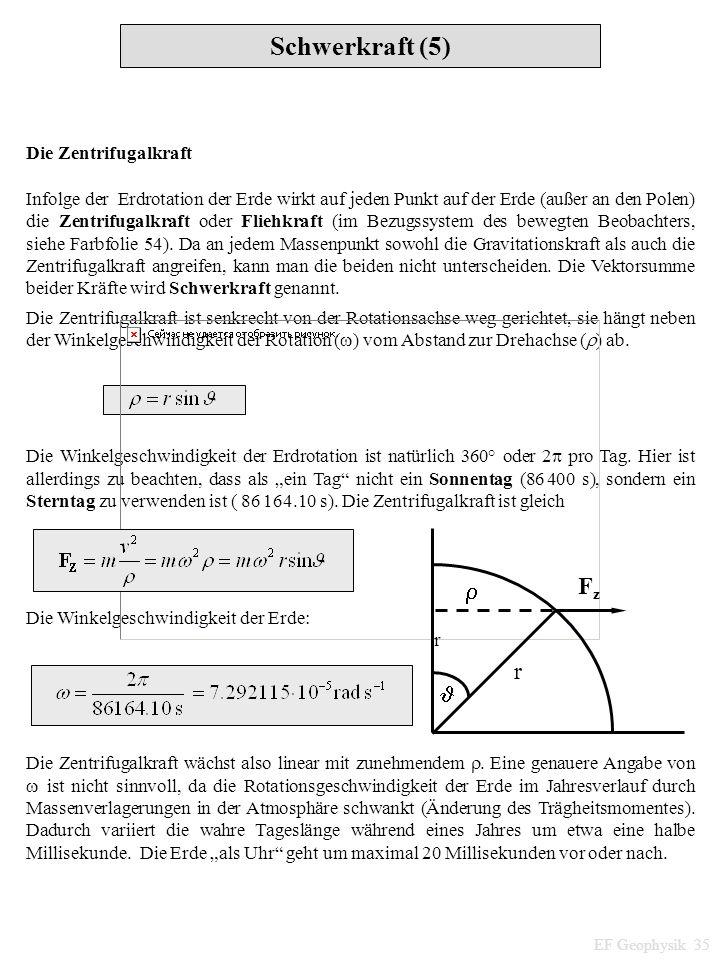 Schwerkraft (5) EF Geophysik 35 Die Zentrifugalkraft Infolge der Erdrotation der Erde wirkt auf jeden Punkt auf der Erde (außer an den Polen) die Zent
