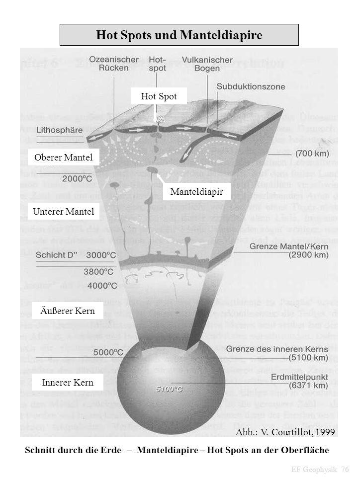 Hot Spots und Manteldiapire Schnitt durch die Erde – Manteldiapire – Hot Spots an der Oberfläche Hot Spot Manteldiapir Unterer Mantel Äußerer Kern Inn