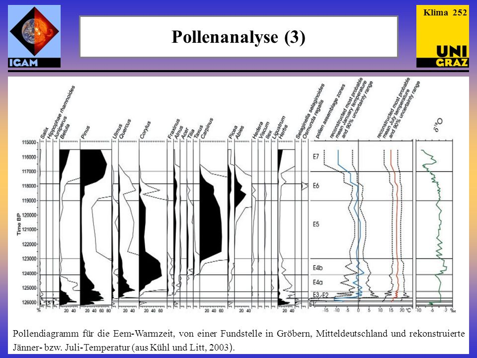 Pollenanalyse (3) Klima 252 Pollendiagramm für die Eem-Warmzeit, von einer Fundstelle in Gröbern, Mitteldeutschland und rekonstruierte Jänner- bzw.