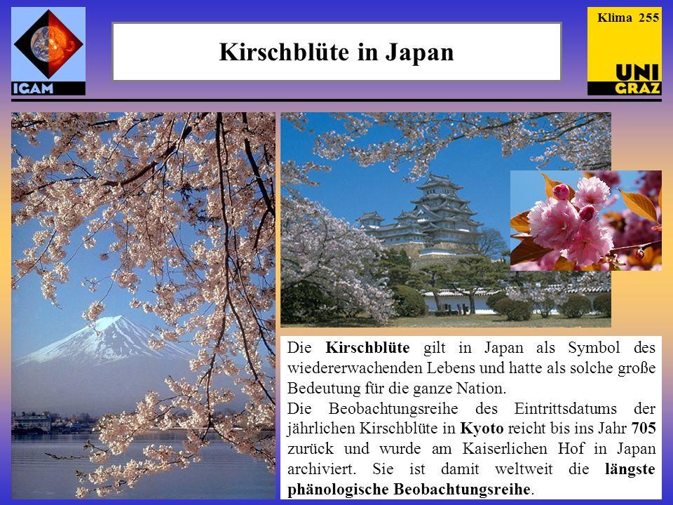 Kirschblüte in Japan Die Kirschblüte gilt in Japan als Symbol des wiedererwachenden Lebens und hatte als solche große Bedeutung für die ganze Nation.