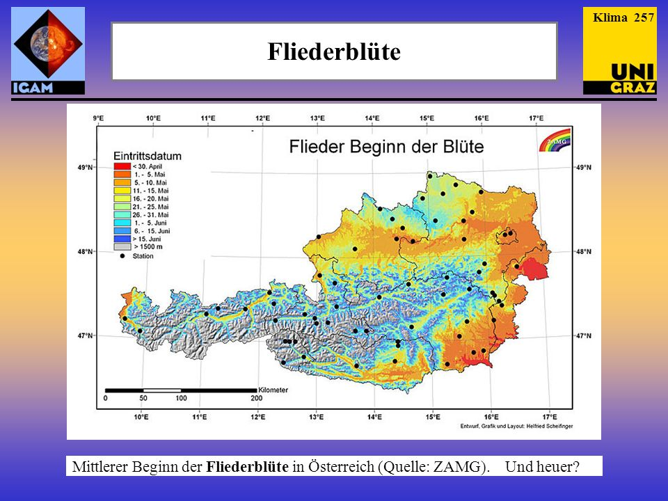 Fliederblüte Mittlerer Beginn der Fliederblüte in Österreich (Quelle: ZAMG). Und heuer? Klima 257