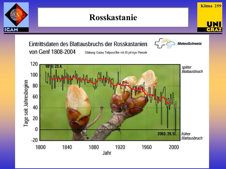 Rosskastanie Klima 259