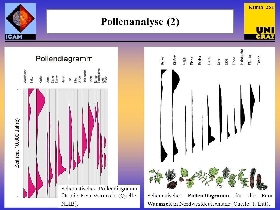 Pollenanalyse (2) Klima 251 Schematisches Pollendiagramm für die Eem-Warmzeit (Quelle: NLfB ). Schematisches Pollendiagramm für die Eem Warmzeit in No