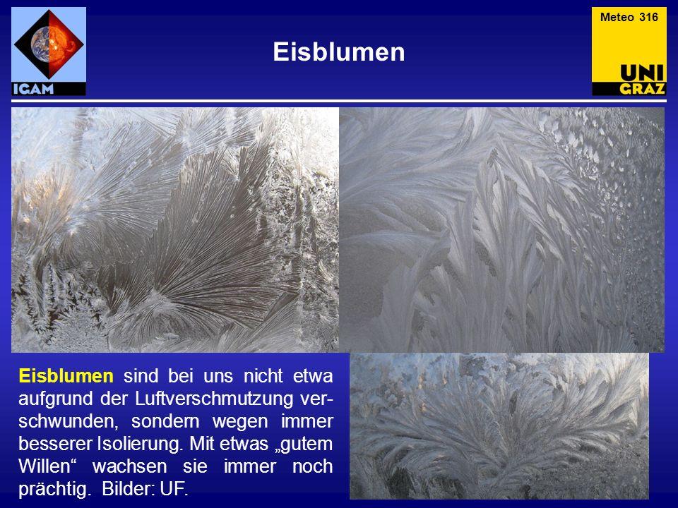 Eisblumen Eisblumen sind bei uns nicht etwa aufgrund der Luftverschmutzung ver- schwunden, sondern wegen immer besserer Isolierung. Mit etwas gutem Wi