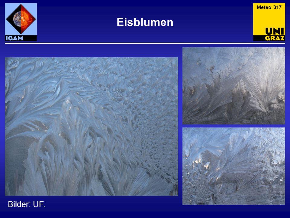Eisblumen Bilder: UF. Meteo 317