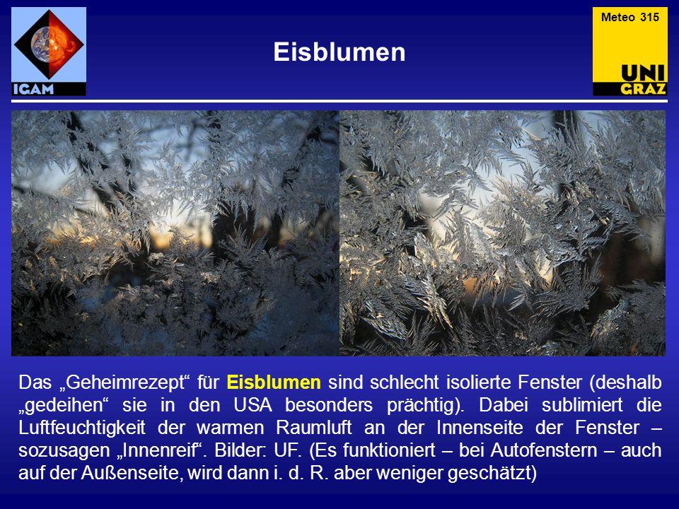 Eisblumen Das Geheimrezept für Eisblumen sind schlecht isolierte Fenster (deshalb gedeihen sie in den USA besonders prächtig). Dabei sublimiert die Lu