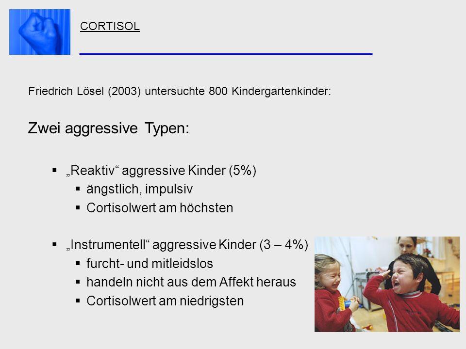 CORTISOL Friedrich Lösel (2003) untersuchte 800 Kindergartenkinder: Zwei aggressive Typen: Reaktiv aggressive Kinder (5%) ängstlich, impulsiv Cortisol