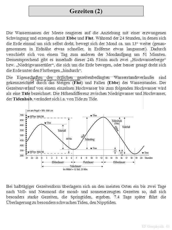Gezeiten (2) EF Geophysik 43 Die Wassermassen der Meere reagieren auf die Anziehung mit einer erzwungenen Schwingung und erzeugen damit Ebbe und Flut.
