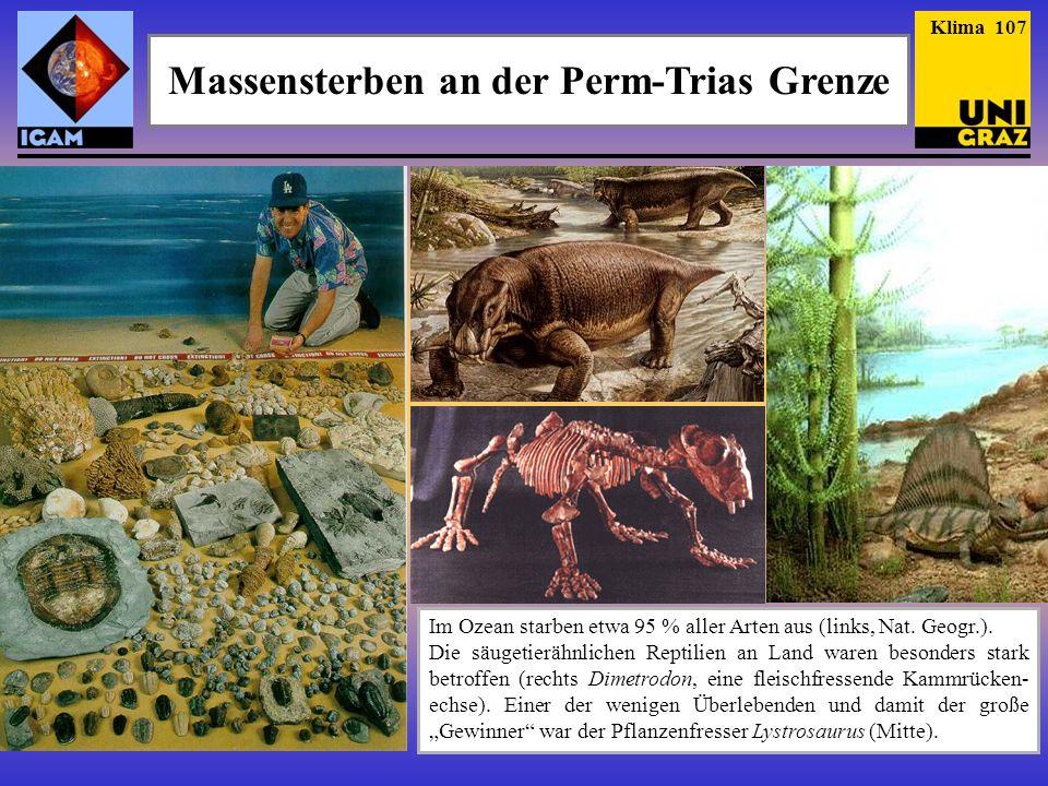 Massensterben an der Perm-Trias Grenze Im Ozean starben etwa 95 % aller Arten aus (links, Nat. Geogr.). Die säugetierähnlichen Reptilien an Land waren