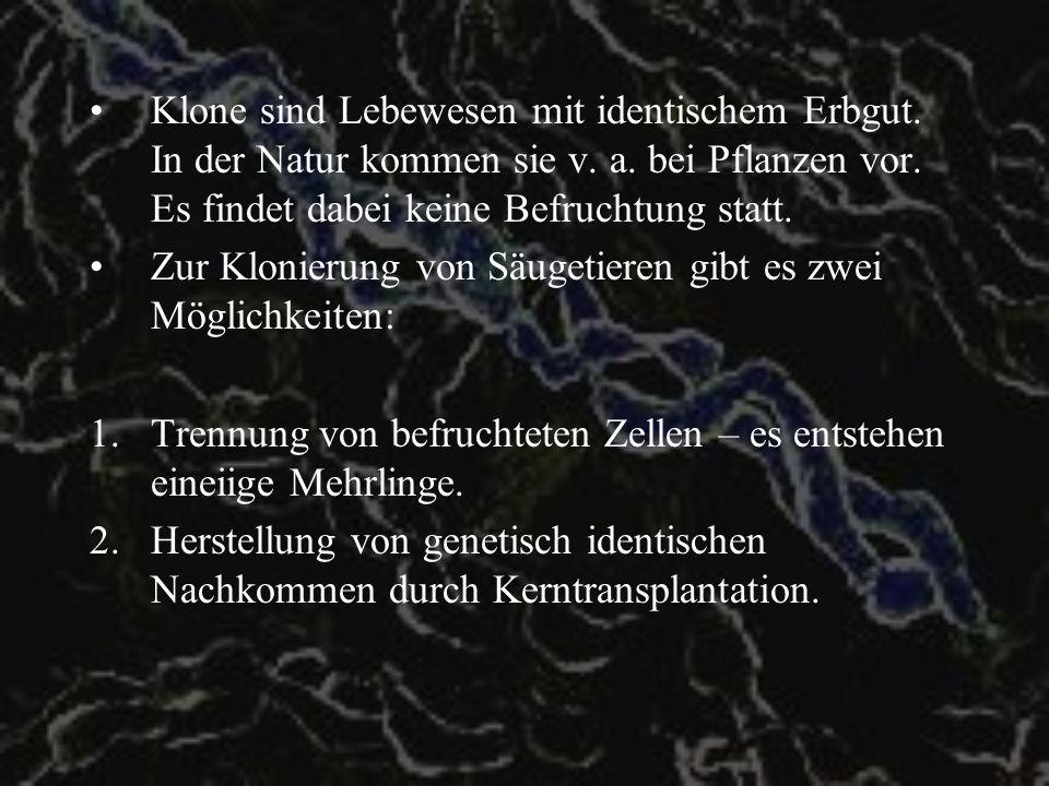 Geschichte Erste Versuche Ende des 19./Anfang des 20.