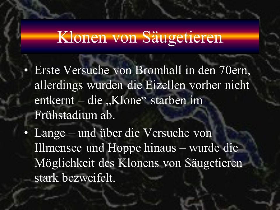 Erfolg durch Illmensee/Hoppe 1981 veröffentlichen Karl Illmensee und Peter Hoppe in CELL ihre erfolgreiche Klonierung von Mäusen.