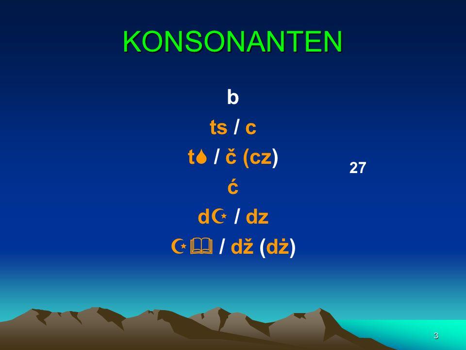 3 KONSONANTEN b ts / c t / č (cz) ć d / dz / dž (dż) 27