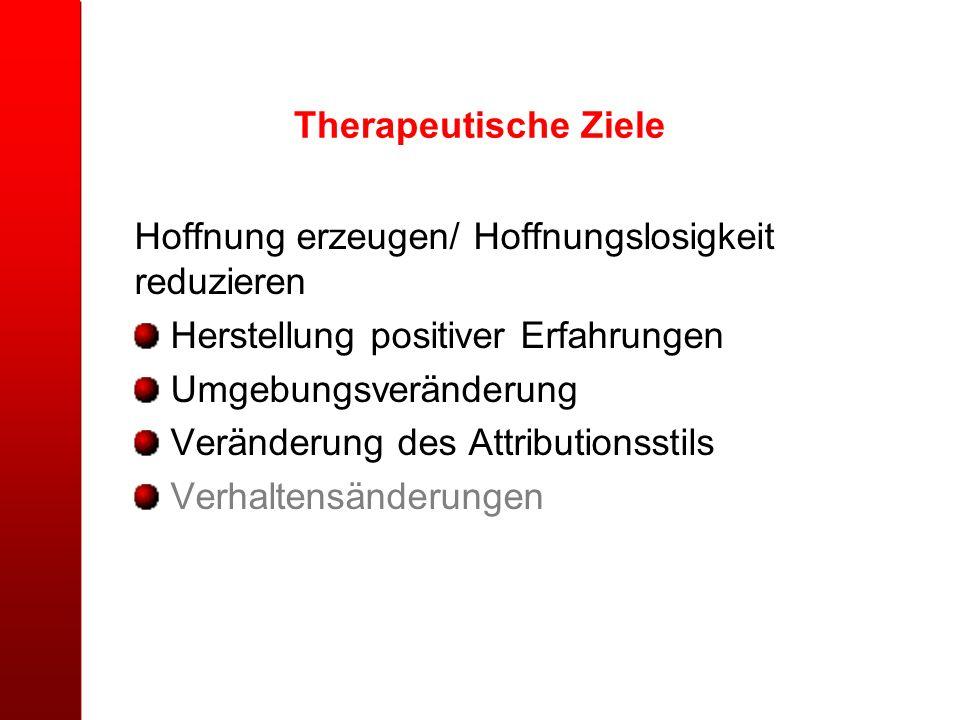Therapeutische Ziele Hoffnung erzeugen/ Hoffnungslosigkeit reduzieren Herstellung positiver Erfahrungen Umgebungsveränderung Veränderung des Attributi