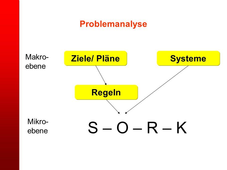 S – O – R – K Mikro- ebene Makro- ebene Ziele/ Pläne Regeln Systeme Problemanalyse