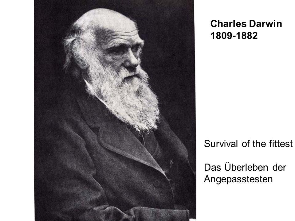 Charles Darwin 1809-1882 Survival of the fittest Das Überleben der Angepasstesten