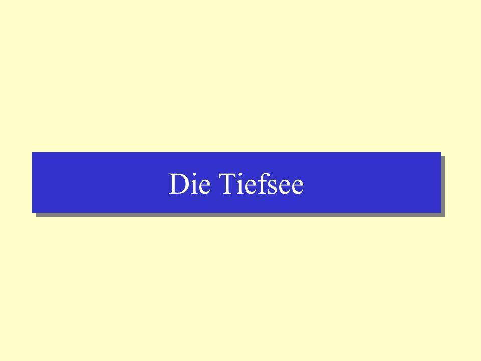 Der Atlantik Tiefsee-Ebenen (abyssal plains) > 5000m Tiefe Tiefsee-Ebenen (abyssal plains) > 5000m Tiefe Umgezeichnet nach Press & Siever, 1995 (Spektrum Lehrbücher)