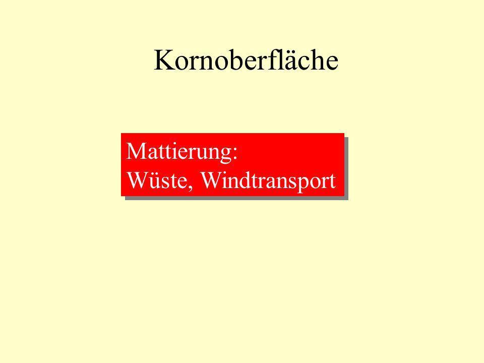 Kornoberfläche Mattierung: Wüste, Windtransport Mattierung: Wüste, Windtransport