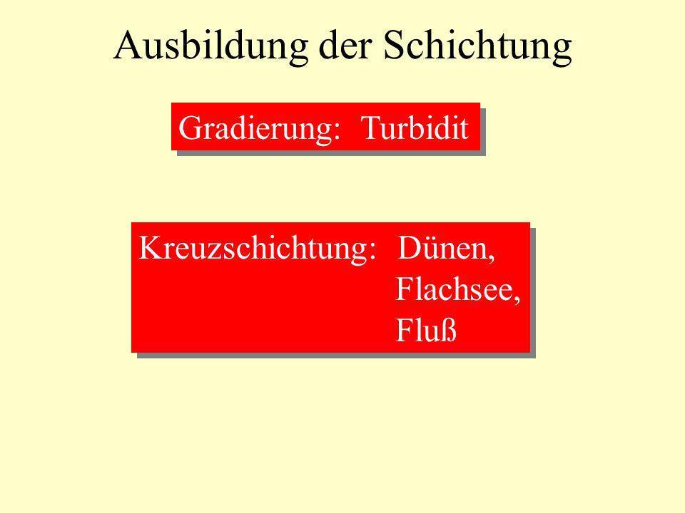 Ausbildung der Schichtung Gradierung: Turbidit Kreuzschichtung: Dünen, Flachsee, Fluß Kreuzschichtung: Dünen, Flachsee, Fluß