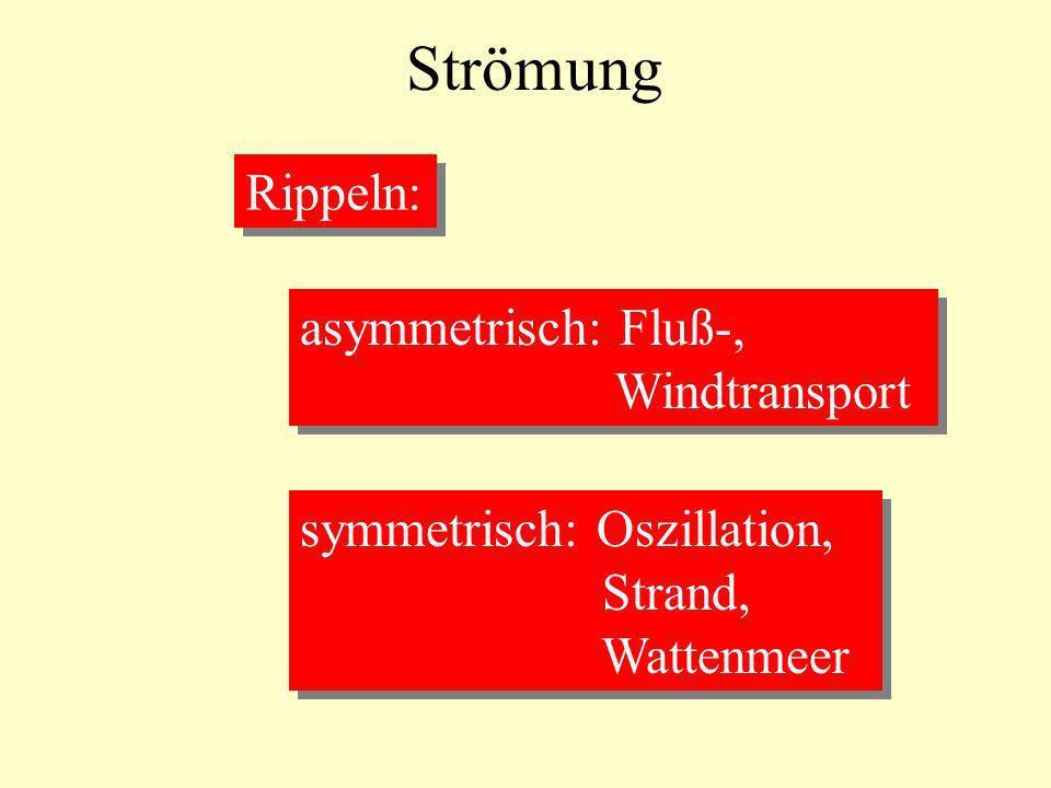 Strömung Rippeln: asymmetrisch: Fluß-, Windtransport asymmetrisch: Fluß-, Windtransport symmetrisch: Oszillation, Strand, Wattenmeer symmetrisch: Oszi
