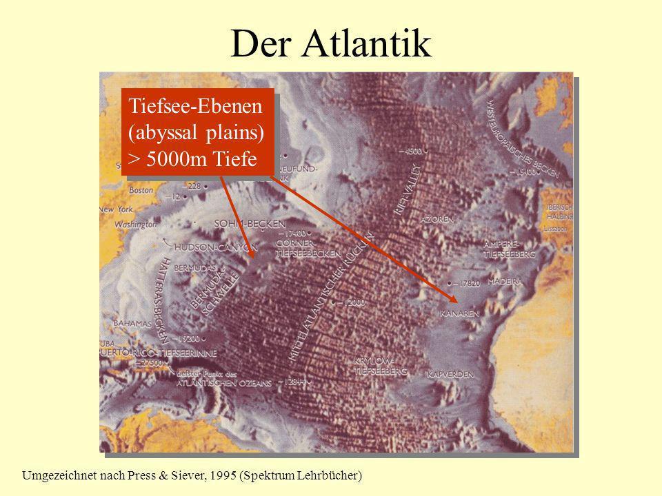 Der Atlantik Tiefsee-Ebenen (abyssal plains) > 5000m Tiefe Tiefsee-Ebenen (abyssal plains) > 5000m Tiefe Umgezeichnet nach Press & Siever, 1995 (Spekt