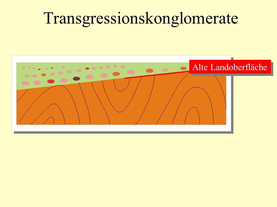 Transgressionskonglomerate Alte Landoberfläche