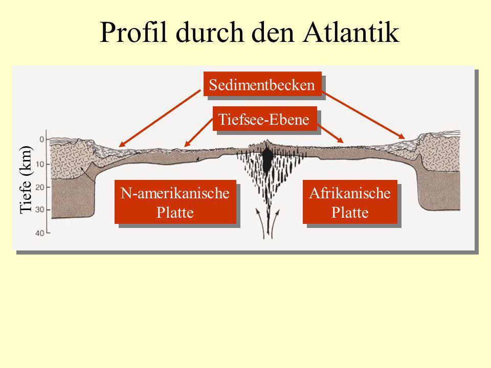 Profil durch den Atlantik N-amerikanische Platte N-amerikanische Platte Afrikanische Platte Afrikanische Platte Sedimentbecken Tiefsee-Ebene Tiefe (km