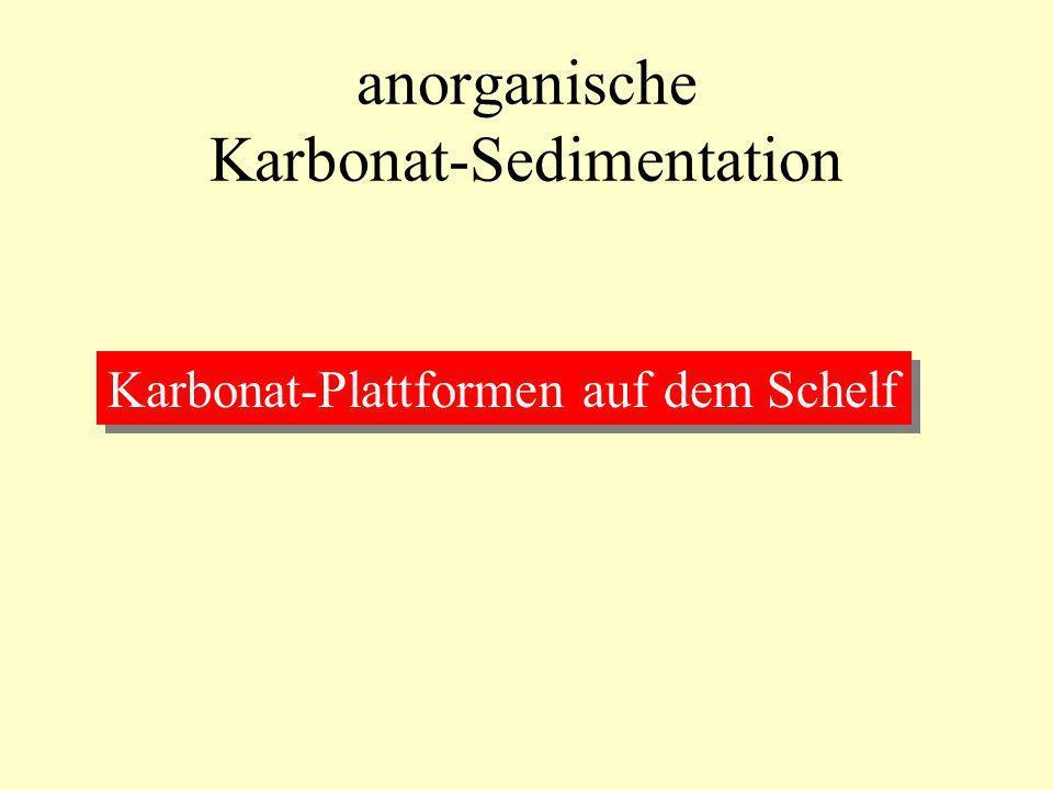anorganische Karbonat-Sedimentation Karbonat-Plattformen auf dem Schelf
