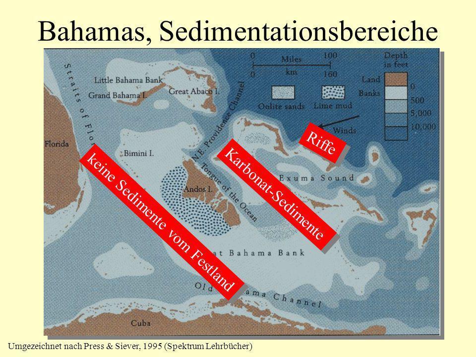 Bahamas, Sedimentationsbereiche keine Sedimente vom Festland Riffe Karbonat-Sedimente Umgezeichnet nach Press & Siever, 1995 (Spektrum Lehrbücher)