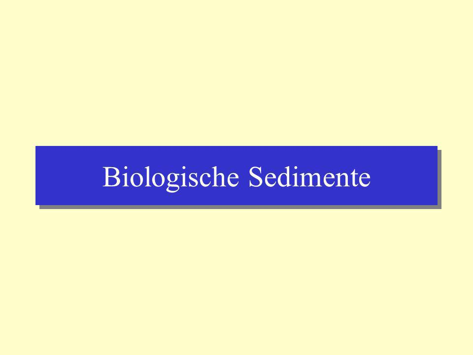 Biologische Sedimente