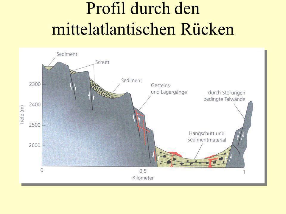Herkunft des Sediments Schwermineral-Spektren ( > 2.9 g/cm 3 ): z.B.
