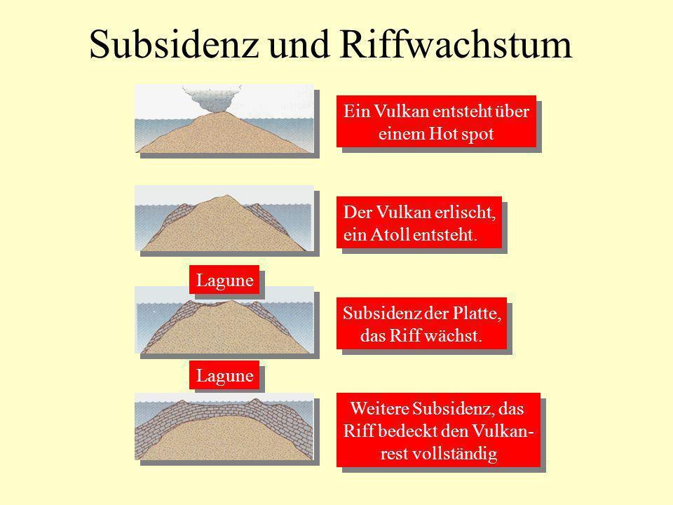 Subsidenz und Riffwachstum Ein Vulkan entsteht über einem Hot spot Ein Vulkan entsteht über einem Hot spot Der Vulkan erlischt, ein Atoll entsteht. De