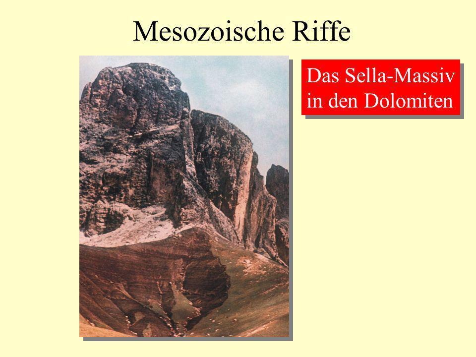 Mesozoische Riffe Das Sella-Massiv in den Dolomiten Das Sella-Massiv in den Dolomiten