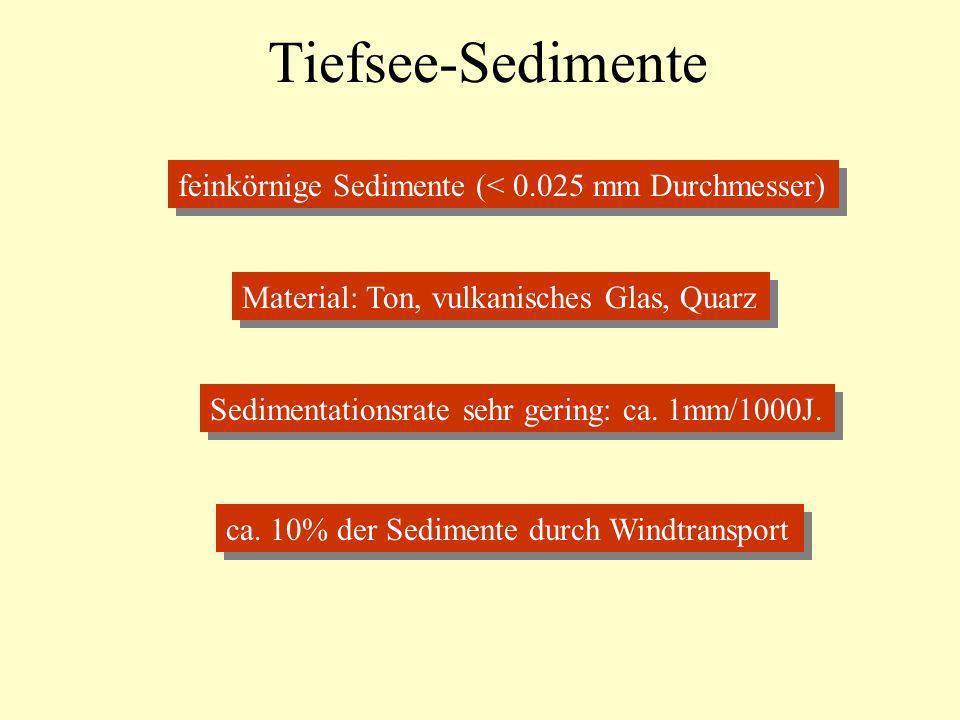Tiefsee-Sedimente Sedimentationsrate sehr gering: ca. 1mm/1000J. feinkörnige Sedimente (< 0.025 mm Durchmesser) Material: Ton, vulkanisches Glas, Quar