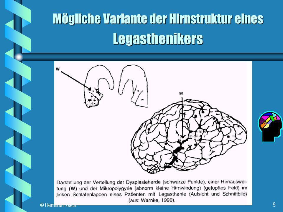 © Hermine Posch 9 Legasthenikers Mögliche Variante der Hirnstruktur eines