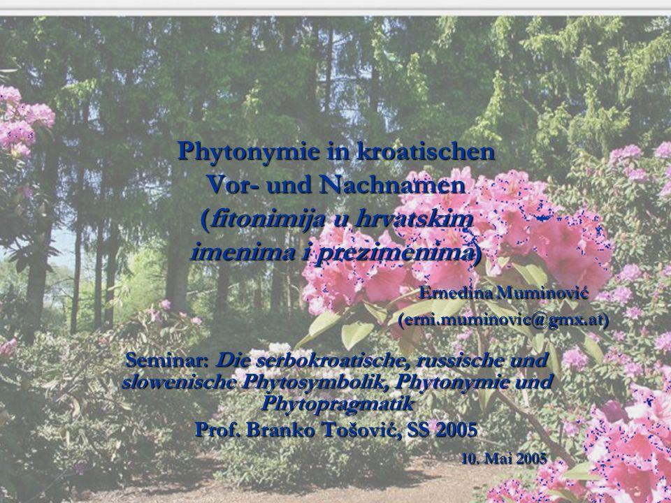 Phytonymie in kroatischen Vor- und Nachnamen (fitonimija u hrvatskim imenima i prezimenima) Ernedina Muminović (erni.muminovic@gmx.at) Seminar: Die se