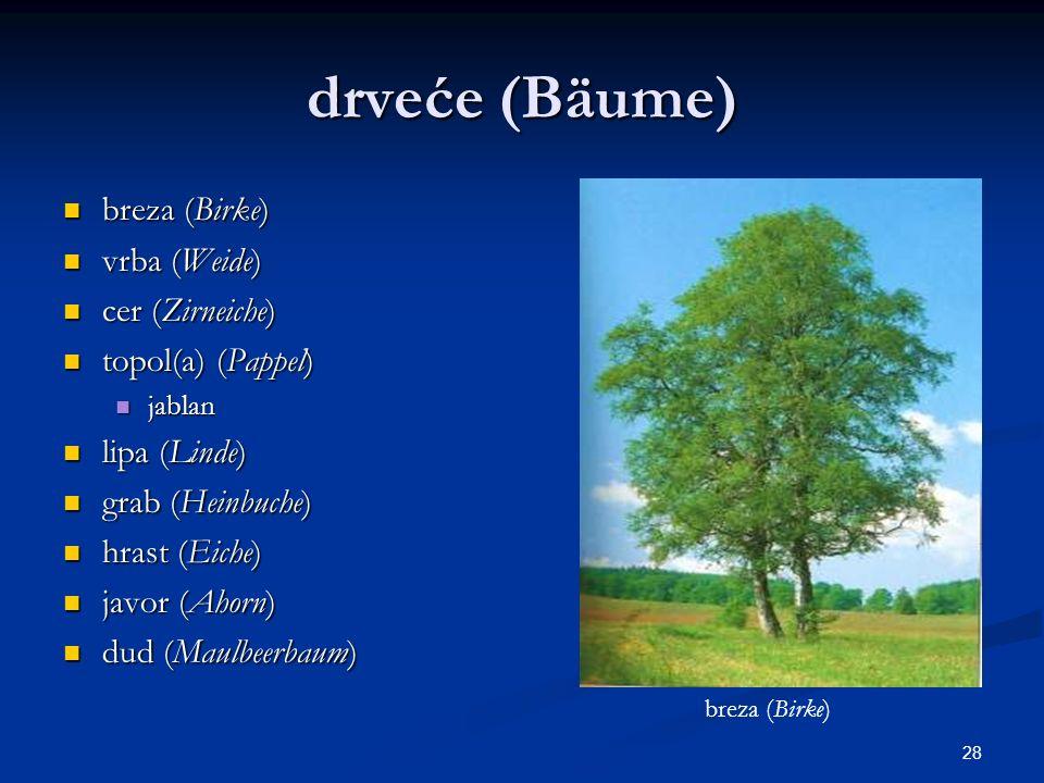 28 drveće (Bäume) breza (Birke) breza (Birke) vrba (Weide) vrba (Weide) cer (Zirneiche) cer (Zirneiche) topol(a) (Pappel) topol(a) (Pappel) jablan jab