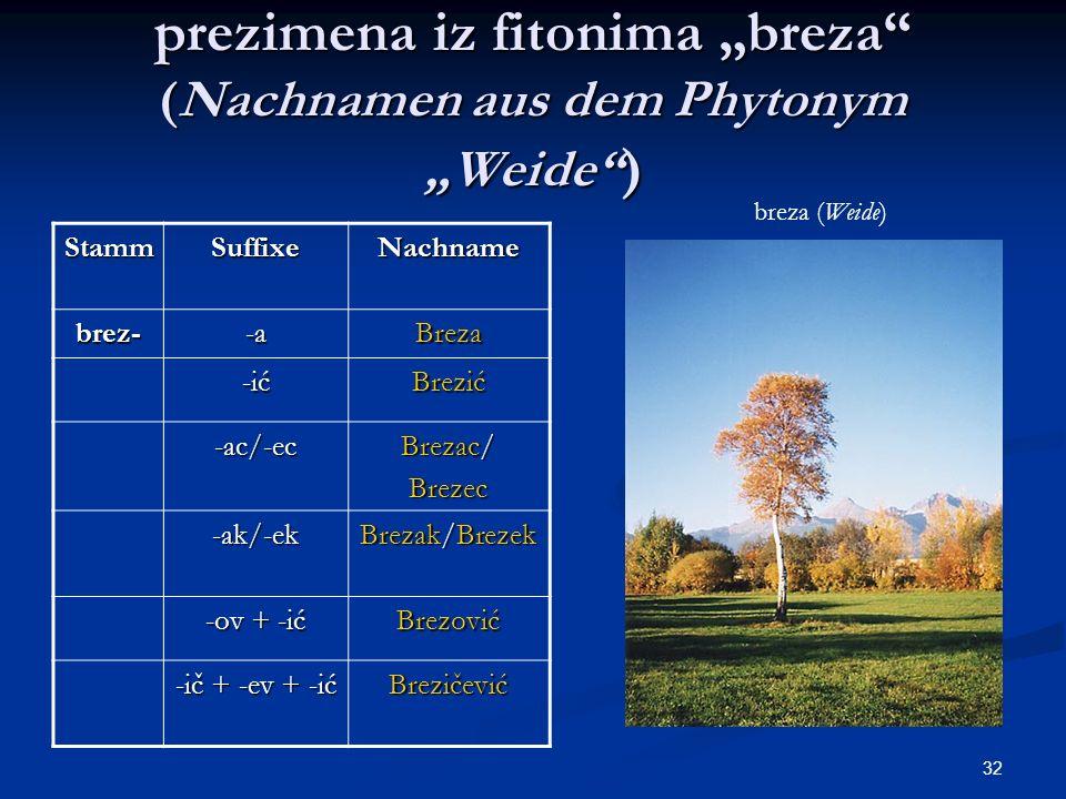 32 prezimena iz fitonima breza (Nachnamen aus dem Phytonym Weide ) StammSuffixeNachname brez--aBreza -ić Brezić -ac/-ec Brezac/ Brezec -ak/-ek Brezak/