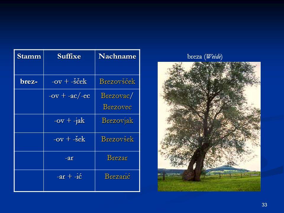 33 StammSuffixeNachname brez- -ov + -šček Brezovšček -ov + -ac/-ec Brezovac/ Brezovec -ov + -jak Brezovjak -ov + -šek Brezovšek -arBrezar -ar + -ić Br