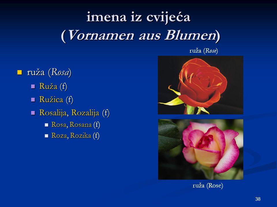 38 imena iz cvijeća (Vornamen aus Blumen) ruža (Rosa) ruža (Rosa) Ruža (f) Ruža (f) Ružica (f) Ružica (f) Rosalija, Rozalija (f) Rosalija, Rozalija (f