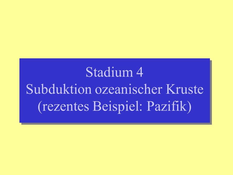 Stadium 4 Subduktion ozeanischer Kruste (rezentes Beispiel: Pazifik)