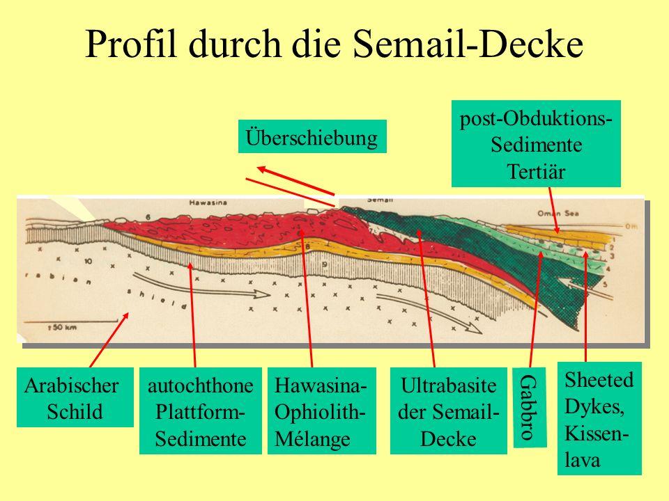 Profil durch die Semail-Decke Arabischer Schild autochthone Plattform- Sedimente Hawasina- Ophiolith- Mélange Ultrabasite der Semail- Decke Gabbro She