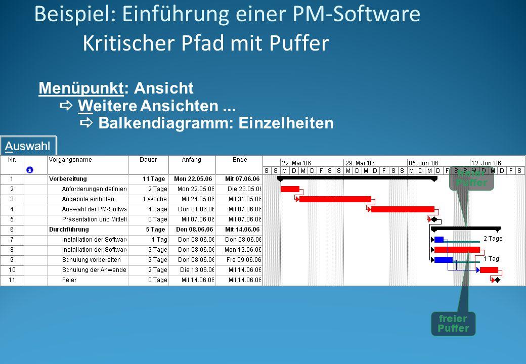 Beispiel: Einführung einer PM-Software Kritischer Pfad mit Puffer Menüpunkt: Ansicht Weitere Ansichten... Balkendiagramm: Einzelheiten Auswahl freier